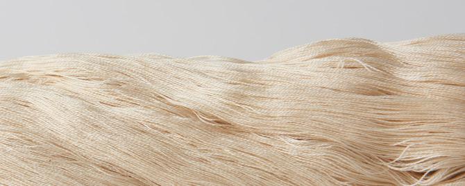 糸 COSMO理由1